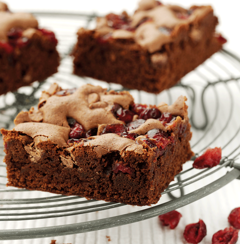 family recipes, chocolate and cranberry brownies